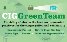 Green Team Graphic